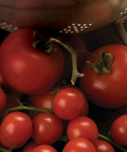 Pomodoro e Sughi